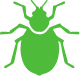 Tweed Heads Pest Control - bed bugs